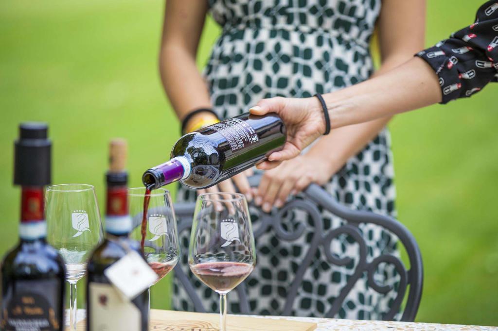 La Valpolicella, terra di vini e bellezza